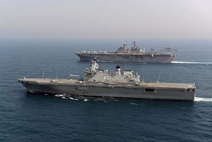 Dokdo-class vessels