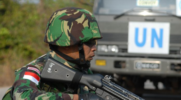 The Indonesian armed forces
