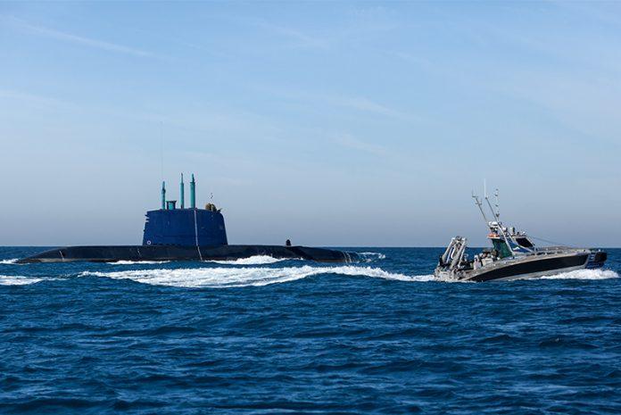 Seagull-and-submarine